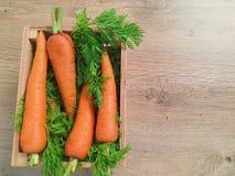 Les carottes fraîches se trouvent sur le fond de la verdure pour la salade Photos libres de droits