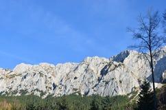 Les Carpathiens orientaux, réservation naturelle de Piatra Craiului, Roumanie Images stock