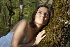Les carress de l'arbre Photos libres de droits