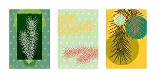 Les cartes avec l'image de l'hiver romantique de branches de sapin conçoivent pour Noël, nouvelle année illustration de vecteur