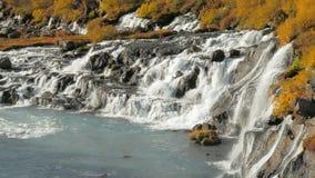 Les cascades de Hraunfossar versent dans la rivière de Hvita d'islandais dans le jour ensoleillé en automne banque de vidéos