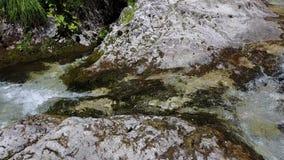 Les cascades, le courant et l'eau claire et claire de Val Vertova clips vidéos
