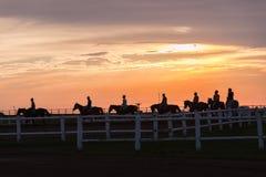 Les cavaliers de chevaux ont silhouetté le matin Photo stock