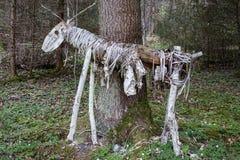 Les cerfs communs sculptent dans une forêt Photos libres de droits