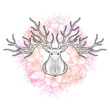 Les cerfs communs se dirigent sur le fond floral, illustration de vecteur Photo stock