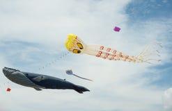 Les cerfs-volants de fantaisie dans le poulpe et la baleine ont formé en ciel bleu nuageux Images libres de droits