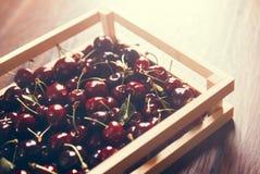Les cerises groupent dans une boîte en bois Photos libres de droits