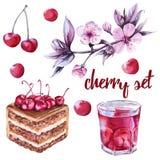 Les cerises ont placé gâteau de chocolat avec du jus de cerise dans un verre, les baies et la branche avec des fleurs D'isolement illustration libre de droits