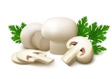 Les champignons blancs de champignon de paris avec le persil part sur le fond blanc Photo stock