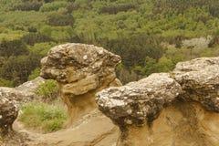 Les champignons en pierre sur la montagne dans la station de vacances se garent Photo stock