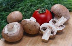 Les champignons, la tomate et le fenouil royaux se trouvent sur le conseil Image libre de droits