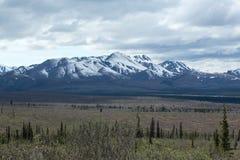 Les champs et les montagnes de l'Alaska Images stock