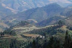 Les champs et les montagnes de terrasse Images libres de droits