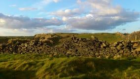Les champs irlandais de l'herbe verte, d'un mur et d'un bleu ont opacifié le ciel Image libre de droits