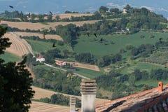 Les champs ruraux moyens de vacances d'été de l'Italie demandent les collines tendres Images libres de droits