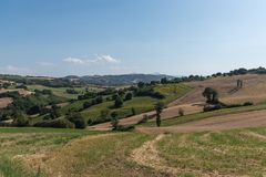 Les champs ruraux moyens de vacances d'été de l'Italie demandent les collines tendres Photo stock