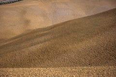 Les champs secs en Toscane Photographie stock