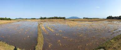 Les champs vides dans Phu Yen, Vietnam Image stock