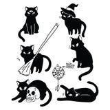 Les chats de Witchy dirigent le caractère familier mystique d'illustration illustration de vecteur