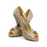 Les chaussures des femmes. Photo libre de droits