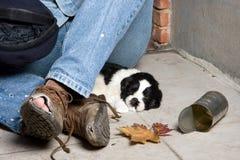 Les chaussures du mendiant Photo libre de droits