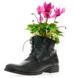 Les chaussures en cuir des hommes de couleur Photographie stock libre de droits