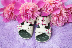 Les chaussures et les fleurs du bébé Image libre de droits