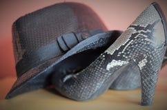 Les chaussures parfaites a besoin de chaque femme Photographie stock libre de droits