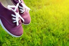 Les chaussures pourpres au-dessus de l'herbe verte de nature pendant le matin allument le fond Photographie stock libre de droits