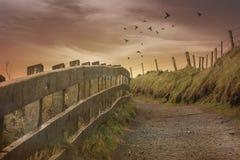 Les chemins des natures Photos libres de droits