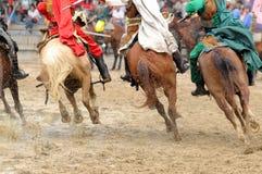 Les chevaux courants Images stock