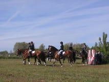Les chevaux de concurrence d'hippodrome de la Russie Novosibirsk le 14 septembre 2013 Novosibirsk dans des cavaliers de sauter et photographie stock libre de droits
