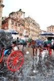 Les chevaux romains d'élite sur la place de l'Espagne Photographie stock