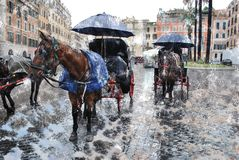 Les chevaux romains d'élite sur la place de l'Espagne dans la neige s anormal Image stock