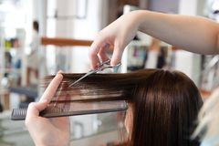 Les cheveux de Cutting Client de coiffeur Photo stock
