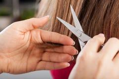 Les cheveux de la femme de coupe de coiffeur Photo libre de droits
