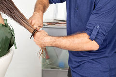 Les cheveux humides de Combing Client de coiffeur Images libres de droits