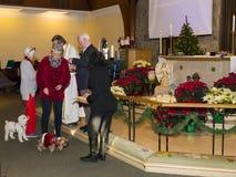 Les chiens et leurs propriétaires recevant la communion ou les festins pendant des pattes et prient le service images stock