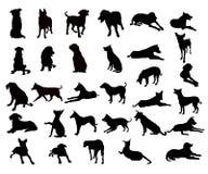 Les chiens silhouettent l'ensemble - vecteur Photographie stock