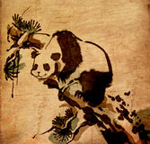 Les Chinois de panda balayent la peinture Images libres de droits