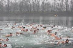 Les chrétiens orthodoxes célèbrent l'épiphanie avec la natation traditionnelle de glace Image libre de droits