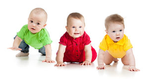 Les chéris ou les enfants en bas âge drôles vont vers le bas sur tous les fours Image libre de droits
