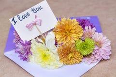 Les chrysanthèmes fleurit dans l'enveloppe pourpre avec je t'aime la carte Image libre de droits
