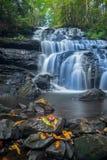 Les chutes chez Vogel Photographie stock