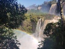 Les chutes d'Iguaçu dans Puerto Iguazu, Argentine photo libre de droits