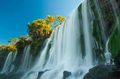 Les chutes d'Iguaçu supérieures Brésil/frontière de l'Argentine Photo libre de droits