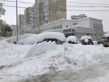 Les chutes de neige lourdes frappe Chisinau au milieu du ressort photographie stock libre de droits