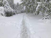 Les chutes de neige lourdes frappe Chisinau au milieu du ressort photo libre de droits