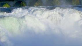 Les chutes du Rhin chez Schaffhausen, Suisse clips vidéos