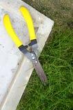Les ciseaux ont coupé l'herbe Photo stock